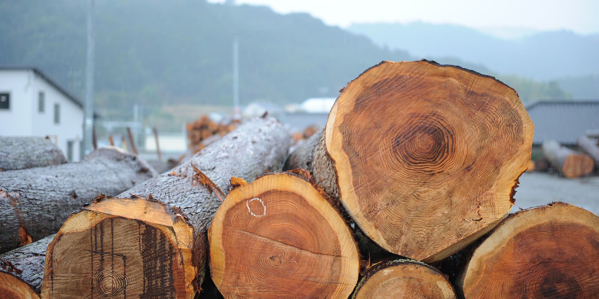 永田木材株式会社|製材・天然乾燥|静岡県浜松市